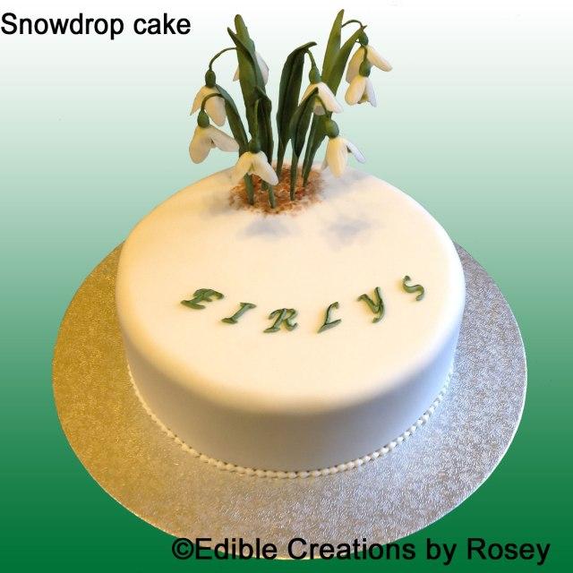 Snowdrop-cake